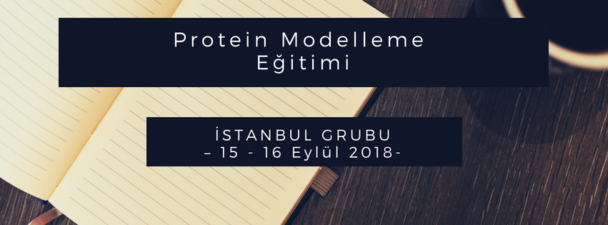 protein modelleme